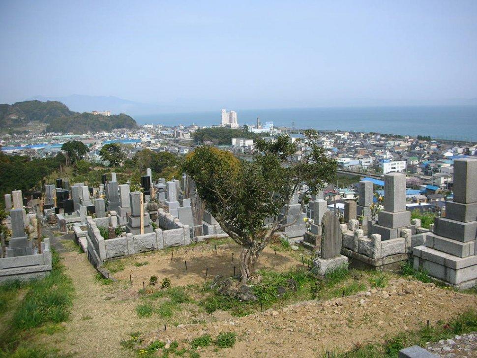 宗徳院 墓地上